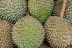 Durial. The king of fruit in Thailand Royalty Free Stock Photography