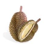 durian απομονωμένη καρπός φωτογραφία τροπική Στοκ Εικόνα