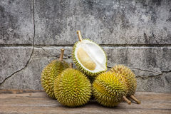 Durian, βασιλιάς του καρπού Στοκ Φωτογραφίες
