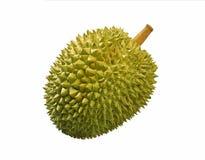 durian καρπός Στοκ Εικόνες