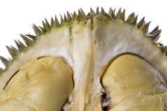 durian μακροεντολή στοκ εικόνες