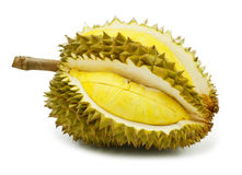 durian που απομονώνεται Στοκ εικόνες με δικαίωμα ελεύθερης χρήσης