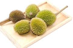 Durian στο σαφές ξύλο Στοκ φωτογραφίες με δικαίωμα ελεύθερης χρήσης