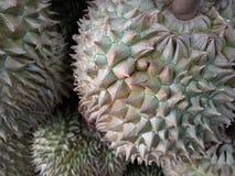 Durian король плодоовощ Стоковая Фотография