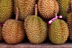 Durian. King of tropical fruit, Durian. It export from Thailand to other contry Stock Images