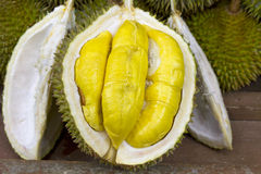 Durian Stock Photography