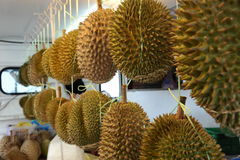 Durian. King of fruit, famous fruit in Thailand Royalty Free Stock Photos