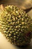 Durian Fotografía de archivo libre de regalías