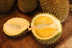 Durian. Open in display with yellow flesh on fruit stand in tropical country Stock Photos