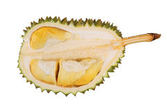 Durian Stock Image