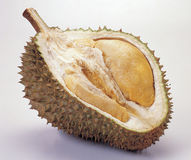 durian Obraz Royalty Free
