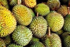 Durian Royaltyfri Bild
