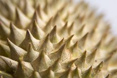 Durian 3 Royalty Free Stock Photo