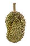 Durian Stockfotografie