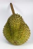 Durian Fotografia Stock
