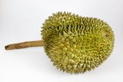 Durian Immagini Stock