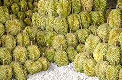 Durian Fotografia Royalty Free
