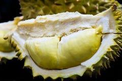 Durian Royaltyfri Fotografi