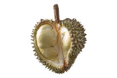 Durian Arkivbilder