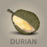Durian fotos de stock