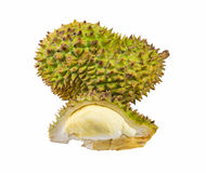 Durian Fotografia de Stock