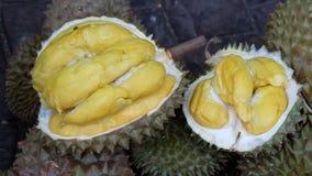 Durian Photos stock