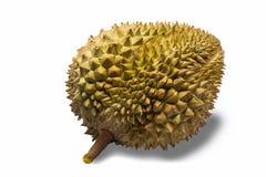 Durian Imagens de Stock Royalty Free