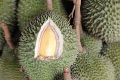 Durian Royaltyfri Foto