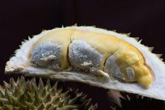 Durian Image libre de droits
