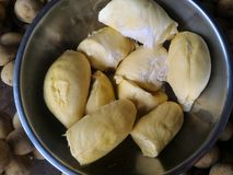 Durian Royalty-vrije Stock Afbeelding