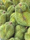 Durian Stockfotos