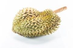 Durian Στοκ φωτογραφία με δικαίωμα ελεύθερης χρήσης