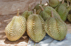 Durian Fotos de archivo libres de regalías