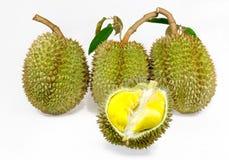 Durian Fotografering för Bildbyråer