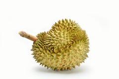 Durian, Arkivbilder