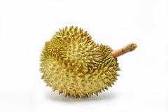Durian, Stockbild