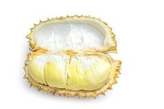 Durian Obrazy Stock