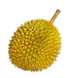 Durian aislado Foto de archivo