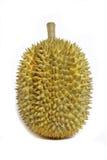Durian aislado fotos de archivo libres de regalías