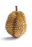 Durian asian fruit Stock Photos