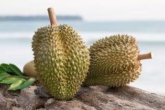 Durian auf dem Klotz Lizenzfreie Stockfotos