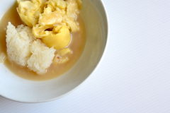 Durian avec du riz collant image stock