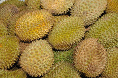 Durian Background Royalty Free Stock Photography