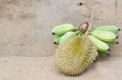 Durian and Banana Royalty Free Stock Photography