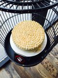 Durian cake. Smelling like Hell and tasting like Heaven Royalty Free Stock Photo