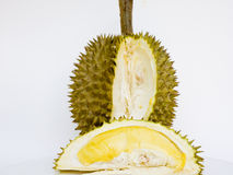 Durian. Cut surface of a durian to show edible yellow flesh Royalty Free Stock Photo