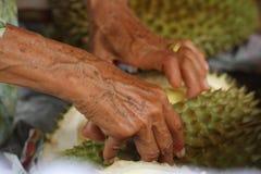 Durian d'ouverture avec les mains de dames âgées à la boutique de vendeur de fruit Image libre de droits