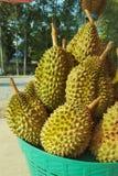 Durian in de mand Royalty-vrije Stock Afbeelding