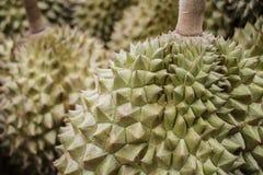 Durian del primer para vender Imagen de archivo