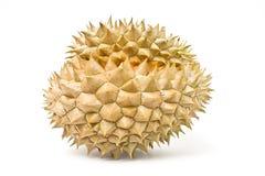 Durian, der König der Frucht von Südostasien stockbild